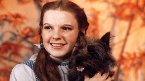'Oz' Sequel Won't Involve Dorothy