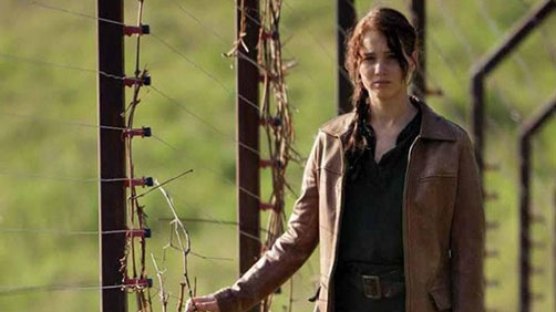 'Hunger Games' Tops Home Video Charts
