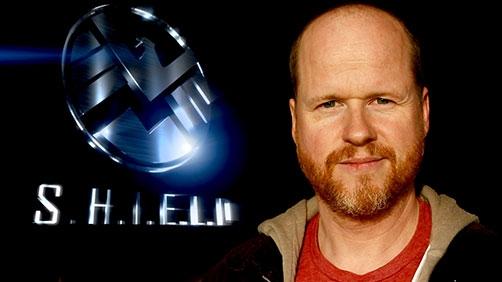 S.H.I.E.L.D. Pilot Ordered
